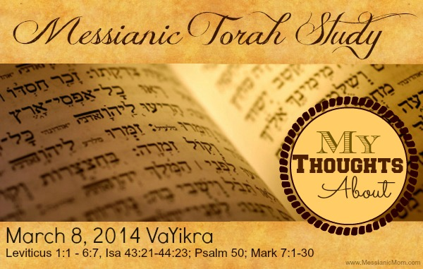 My Thoughts on Torah Portion Vayikra