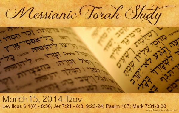 March 15th Messianic Torah Portion Tzav - Messianic Mom
