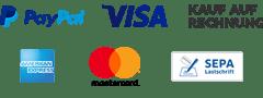 PayPal Plus Logo mit allen Bezahlmöglichkeiten