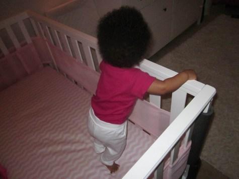 Baby Bird standing in her crib