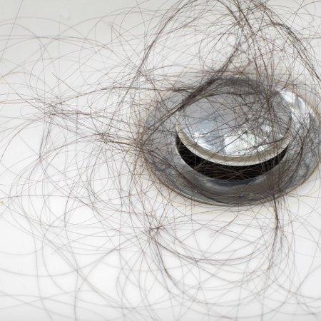 Can Black-Tea Rinses Stop Postpartum Hair Loss?
