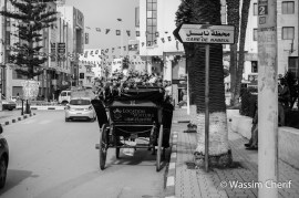 On the way to the market