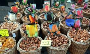bulbes amsterdam marché