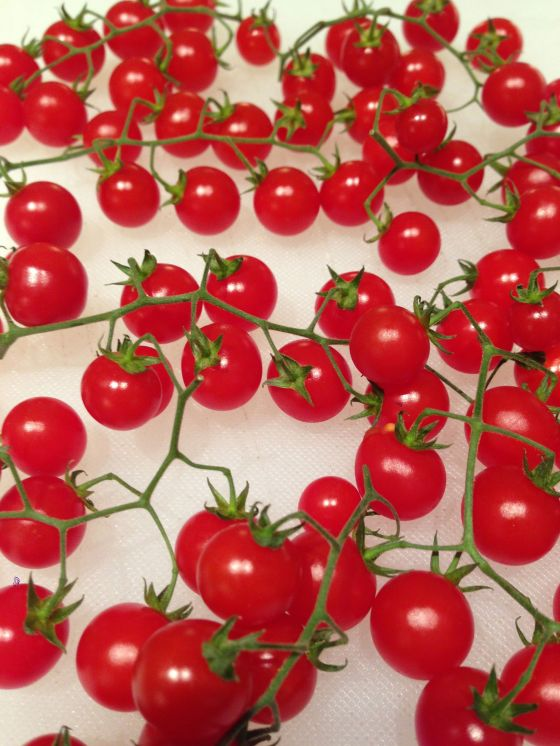 Tomatoe smallish