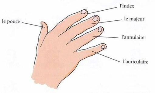 signification des 5 doigts de la main