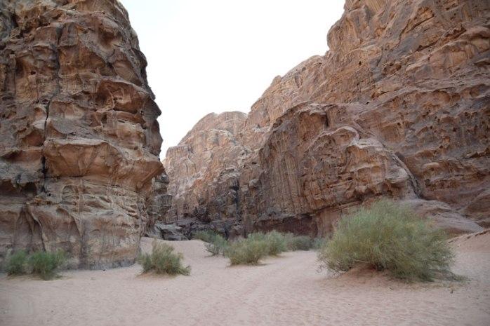 wadi-rum-siq