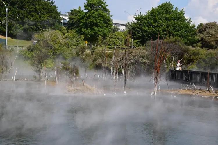 rotorua-parc