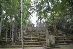 escalier-calakmul