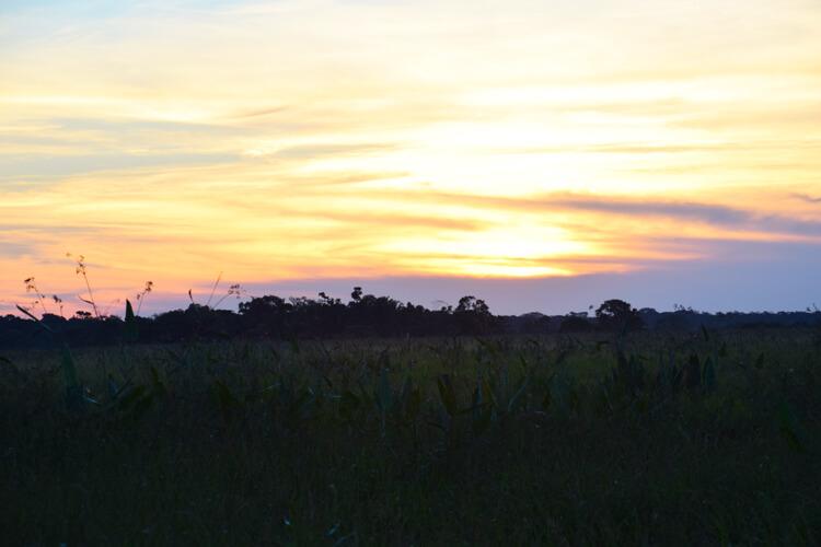 Parc national Madidi coucher soleil