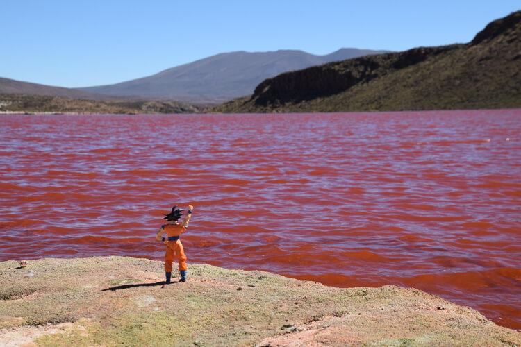 Son Goku laguna roja