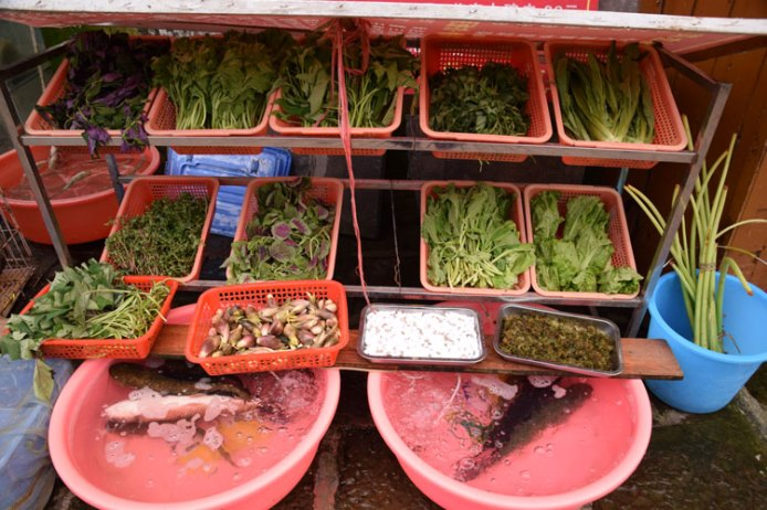 legume-chine