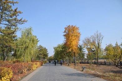 yungang-parc