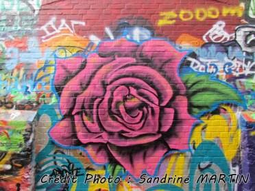 Gand - Au hasard des rues, des graffitis