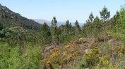 Parc de Geres - Sur la route de Lindoso - côté Espagne