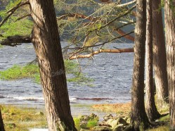 Wicklow mountains - Upper lake
