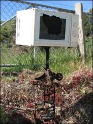 Dunedin et sa Otago Peninsula - Et oui, comment recycler un micro-onde...