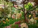 Melbourne - Parc 'Fitzroy Garden', conservatory