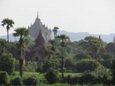 Bagan - Temple 'Hti-Lo-Min-Lo', vue