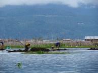 Lac Inle - Les bâteaux