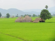Voyage en train entre Mandalay à Myitkyina