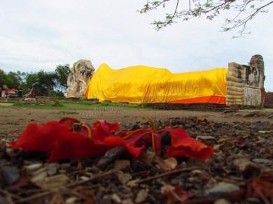 Ayutthaya - Temple 'Wat Lokayasutharam'