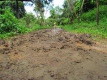 Chiang Mai environs - Rando dans la jungle., sur le chemin, la boue laissée par la pluie