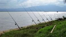 Phayao - Lac artificiel 'Kwan Phayao', cannes à pêche
