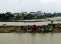 Ninh Binh - Sur la route, les tombes dans les risières