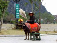 Ninh Binh - Temple