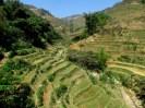 Sapa - Sur le chemin entre Sapa et Lao Chai