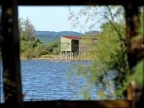 Bouche du Rhône - La Camargue - Parc naturel du scamandre