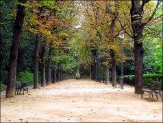 Rhône - Lyon - Vieux Lyon, jardin de rosaire