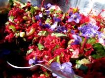 Tarn - Vaour - Le Jardin d'Emerveille - Salade sauvage colorée