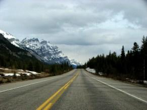 Parc national de Jasper - Sur la route