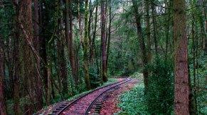 Oregon - Portland - Around Downtown - Washington Park - Train station