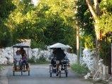 Yucatan - Cuzama - Sur la route