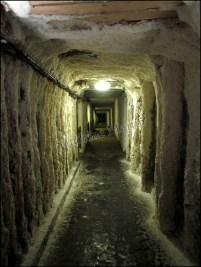 Cracovie - Wieliczka, Mine de sel, Mur de sel