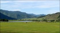 Lac Khovsgol - Sur la route entre Bulgan et lac Khovsgol, steppes