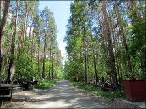 Yekaterinbourg - Cimetière Shirokorechenskoye Kladbishche, dit cimetière de la mafia, allée