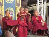 Katmandou - Temple 'Swayambhu', petits moines