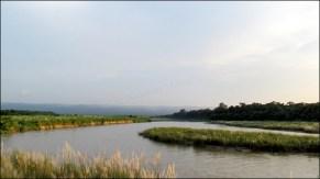 Parc national de Chitwan - Rivière 'Narayani-Rapti', vue