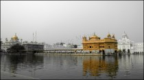 Amritsar - Temple d'Or