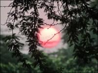 Delhi - Coucher du soleil