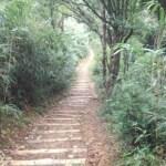 呉羽山プチトレイルラン、峠走、坂道ダッシュで心肺機能の強化!