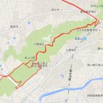 お盆太り解消!夏の呉羽山トレイルラン。