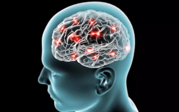 бактерии проникают в мозг