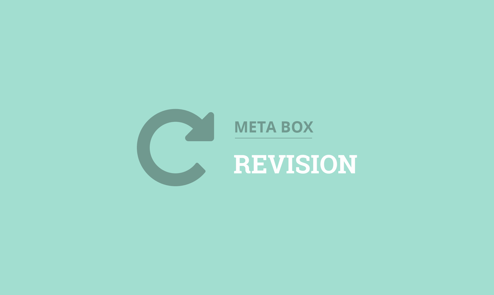 MB Revision