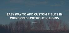 Easy way to add custom fields in WordPress without plugins