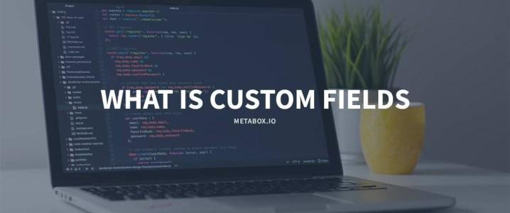 What is custom fields in WordPress