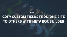 How to Easily Copy Custom Fields From One Site to Others with Meta Box Builder